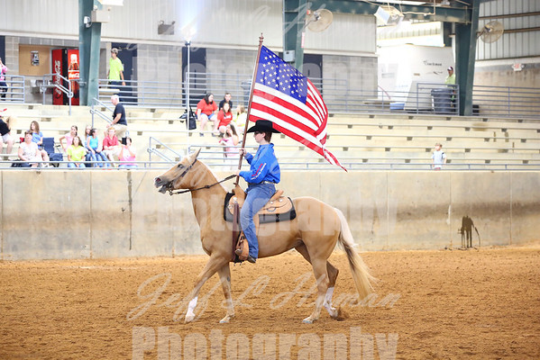 Southeast District Parade of Counties 2014