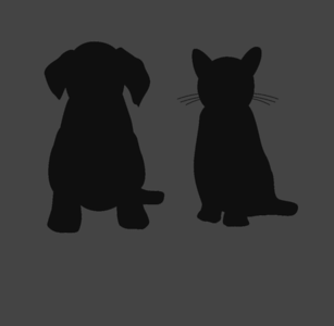 ANIMALS: DOGS & CATS