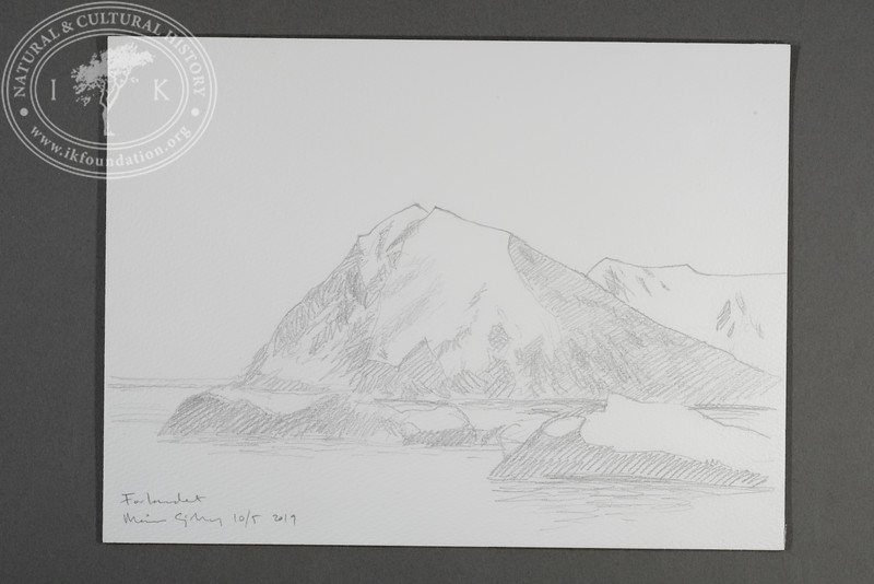 """Prins Karls Forland drawn from the Field Station 