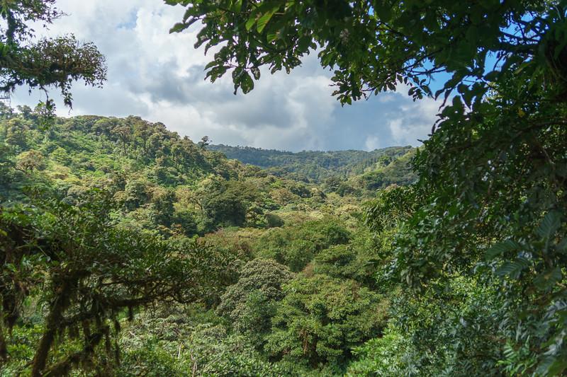 Costa Rica 2015-4086.jpg