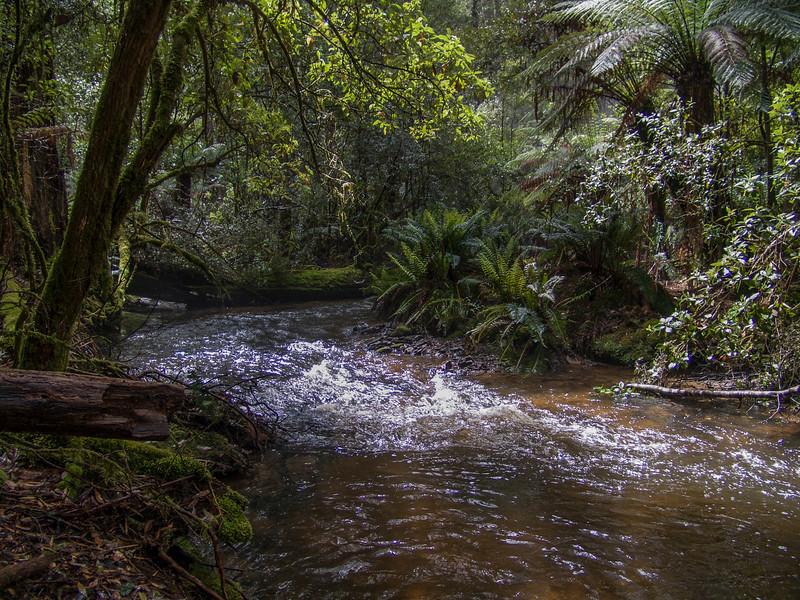 Australia-01904.jpg