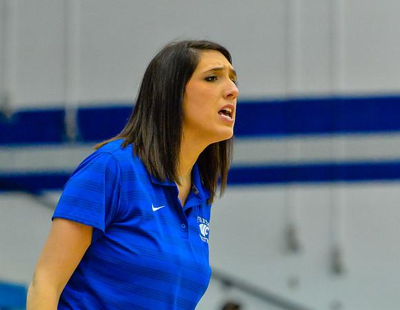 Lady Panthers, Junior Varsity, South Grand Prairie,12-08-15, Basketball-8