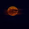MoonSandbridge-020