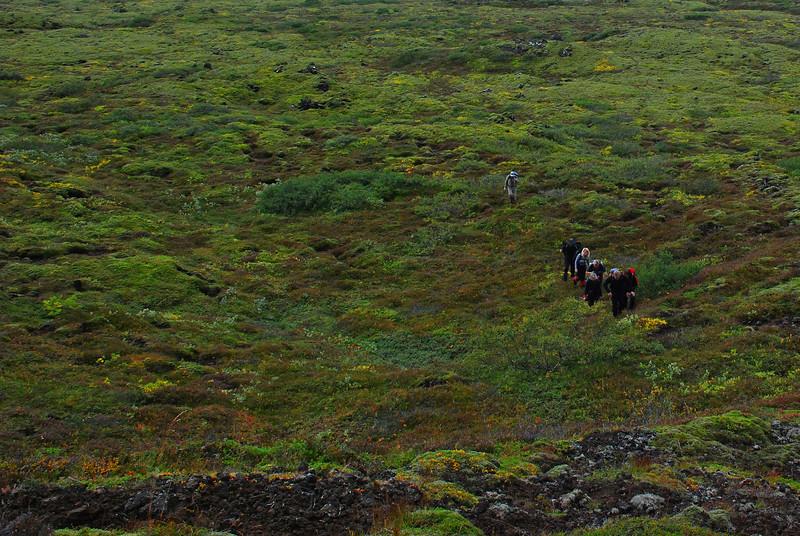 Hópurinn liðast í gegnum Þingvelli