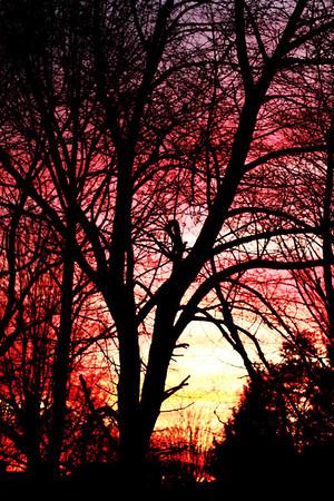 sun sets/ morning moon