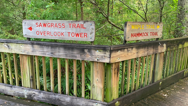 Trail junction signs for Sawgrass, Hammock, Maple Trails