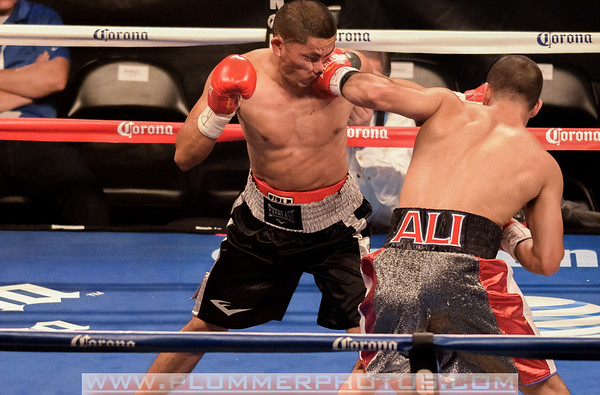 Ali vs Selig Dec. 2013