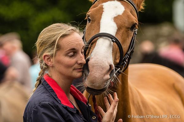 Tallow Horse Fair - 04/09/2017