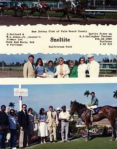 SNOLTITE - 02/22/1985
