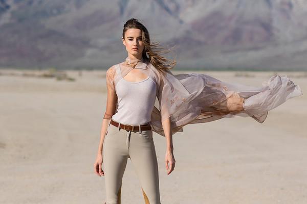 Desert - Zinta Braukis
