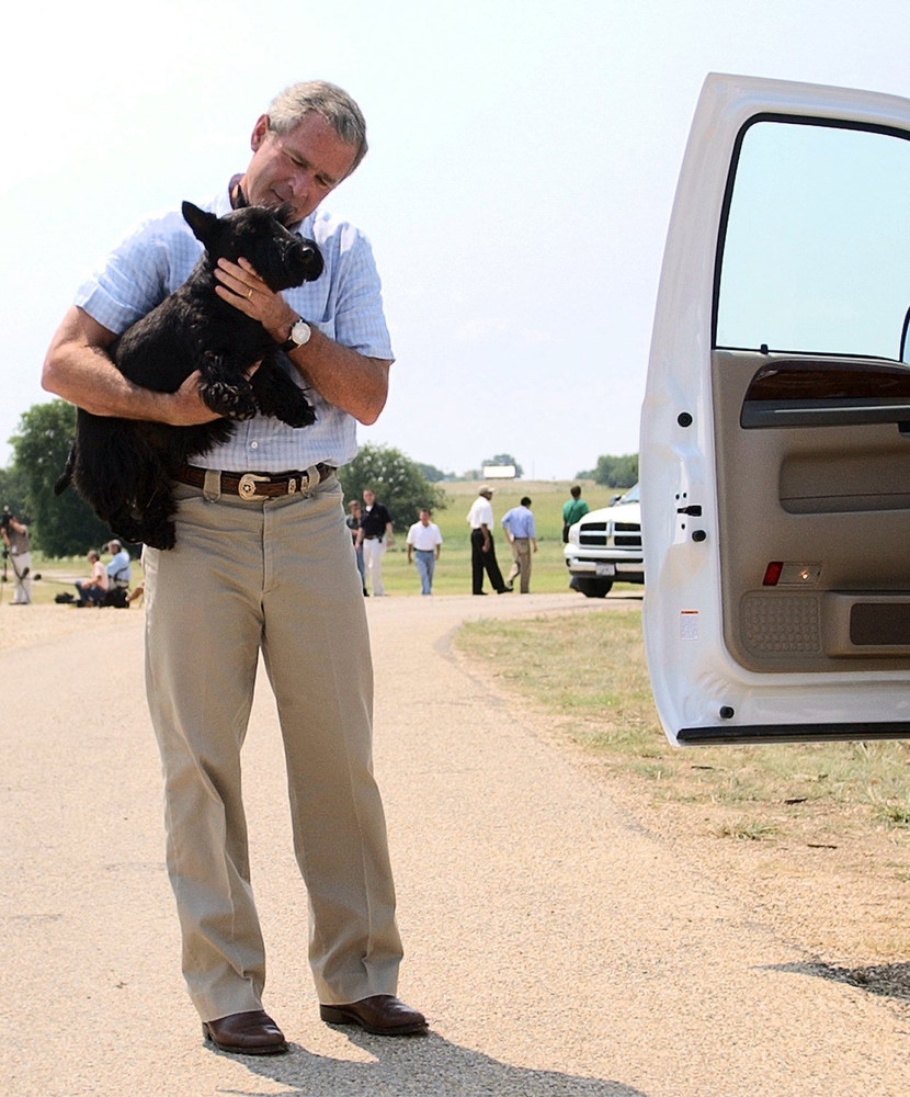 Description of . President Bush carries his dog Barney into his pickup truck before driving back to his ranch house, after talking to the press on the ranch in Crawford, Texas on Wednesday, August 13, 2003.  Bush appeared before the press with his team of economic advisors after meeting with them during his August vacation. (AP Photo/Gerald Herbert)