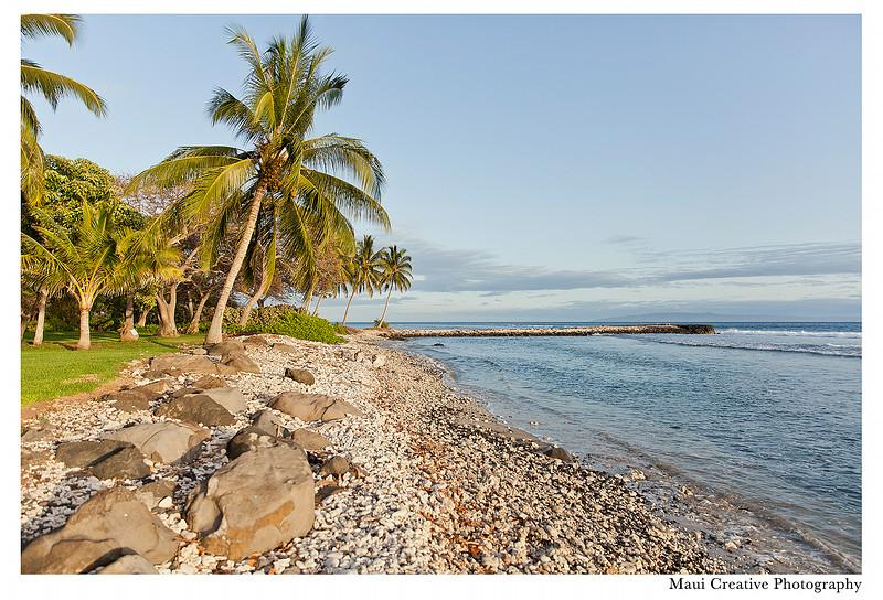 Maui_Wedding_Photographers_Olowalu_Plantation_House_442.jpg