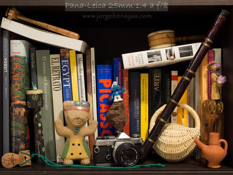 Pana-Leica 25mm 1.4 a f/8