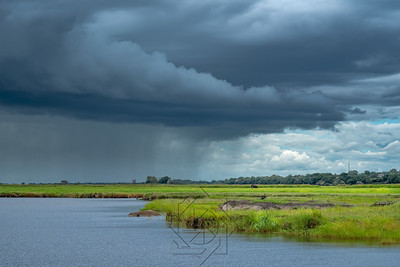 ON THE CHOBE RIVER