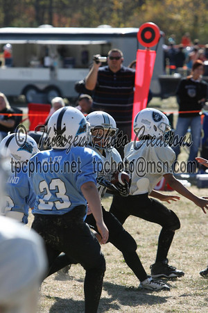 Panthers vs Raiders