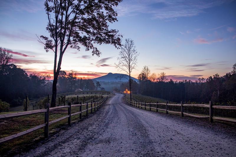 Road to Pilot Mountain