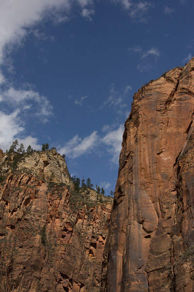 River walk zion canyon 20.jpg