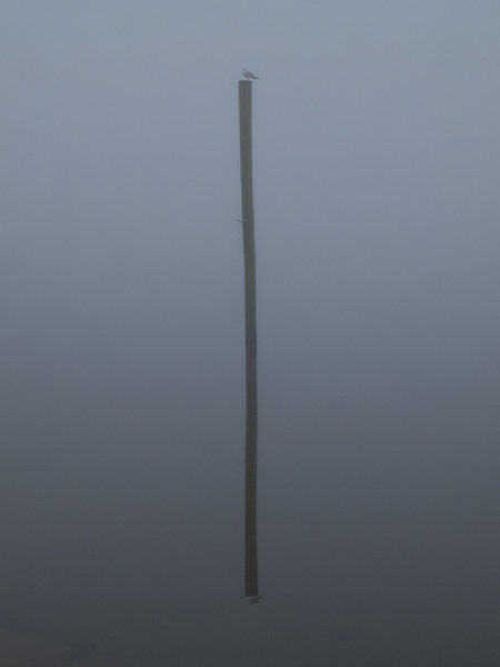 Mooring pole and its reflection on water