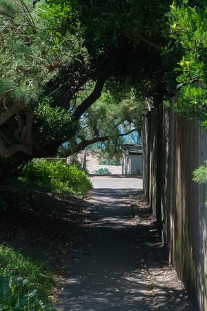 Janine Lowe Beach-263.jpg