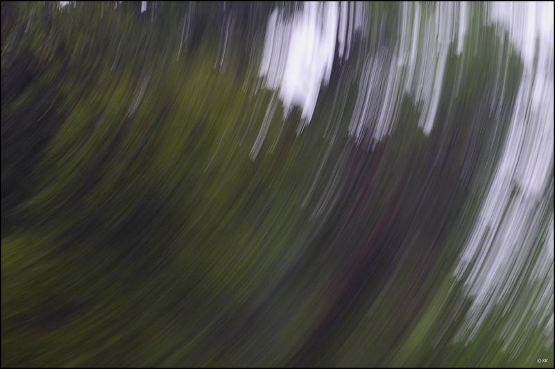 The twirl.....