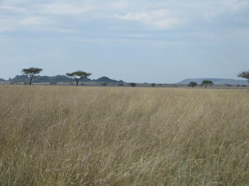Tanzania14-3510.jpg