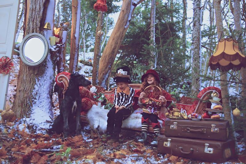 Merry Christmas In Christmas Wonderland