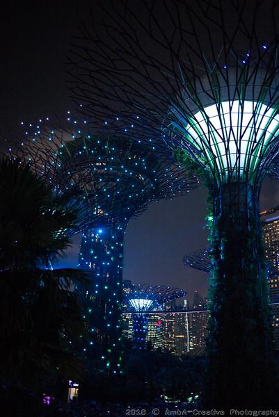 2018-07-18_FunWithFamily@GardensByTheBay_SingaporeSG_69.JPG