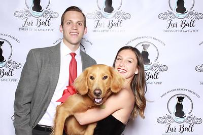 Fur Ball Gala 2019