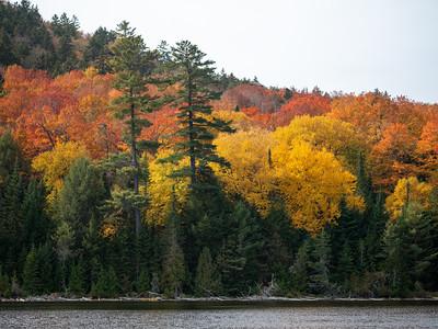 Autumn in Northern Maine