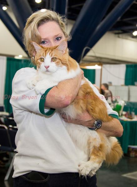 CatShow2014022.JPG