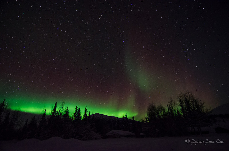 USA-Alaska-Wiseman-Aurora-2796.jpg