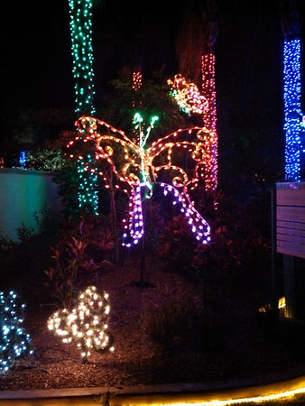 2012-12-21 - Botanical Garden Lights