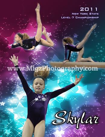 2011 NY State Gymnastics