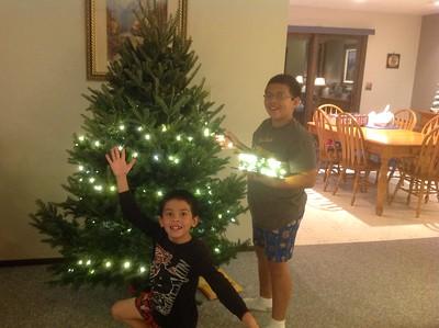2013-11-24 Setting up the Christmas Tree