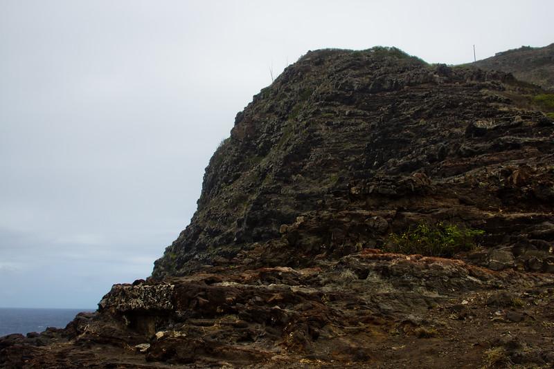 Journey into Oahu Photograph 184