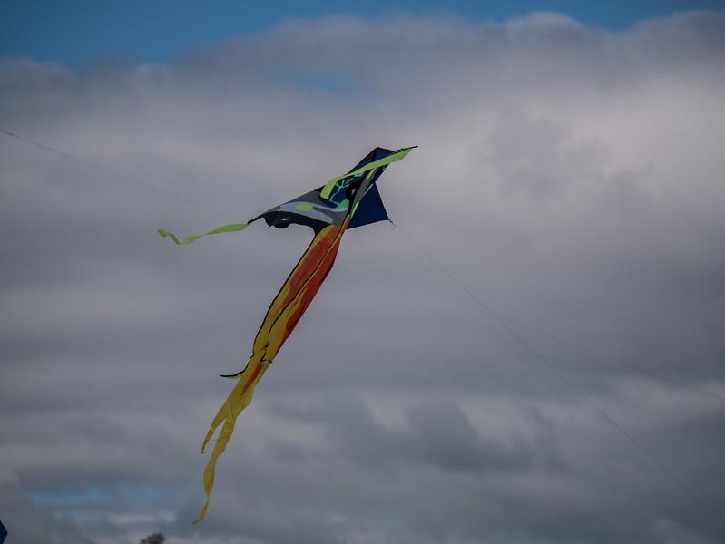 Blossom Kite Festival (2017)-20.jpg
