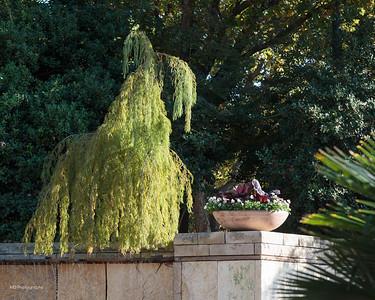 112015 Arboretum