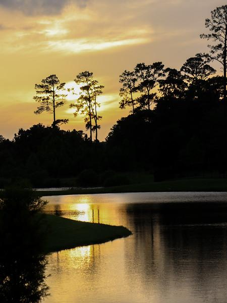 Creekside Photo Request