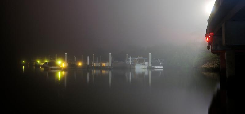 foggy harbor4.jpg