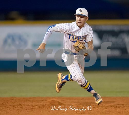 Charlotte High School Boys Baseball: 2018 Season