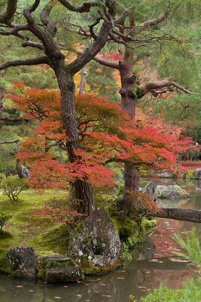 enche-japanese-garden-02.jpg
