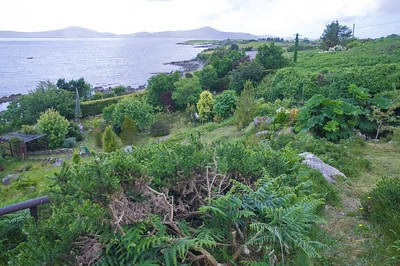 Irland - Cois Cuain Gardens