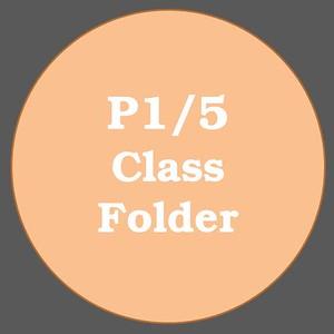 P1/5 ACTIVITIES
