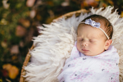 Delaney's Newborn Session