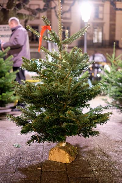 Strasbourg_ChristmasMarket-161125-35.jpg