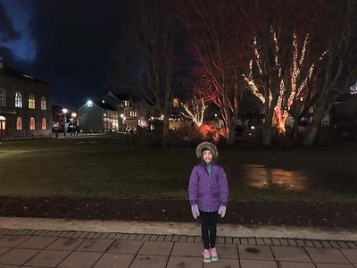 Iceland - December 2017