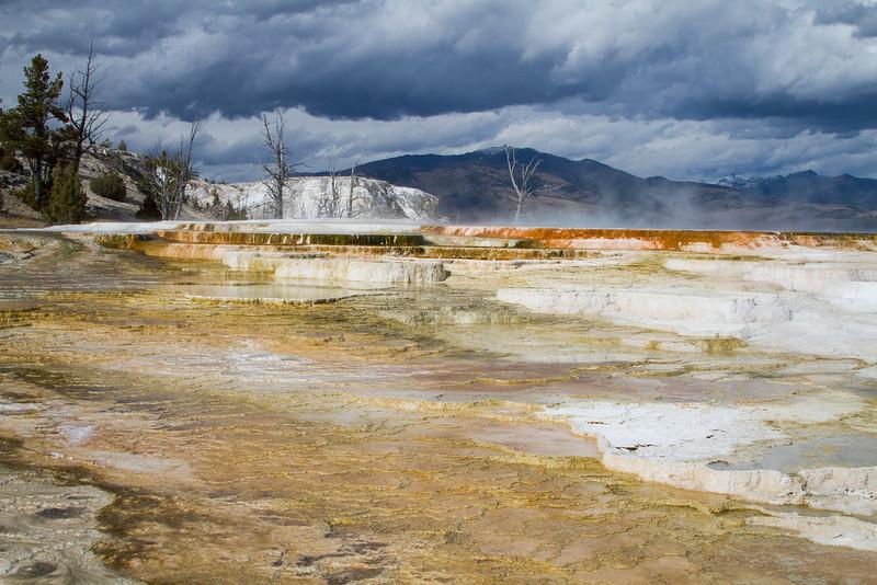 Yellowstone5 786.jpg