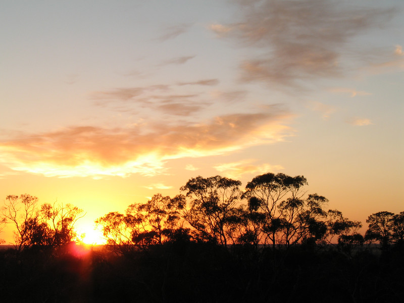 Sunrise over the Pines camping ground, Mt Arapiles  Photo: Trent