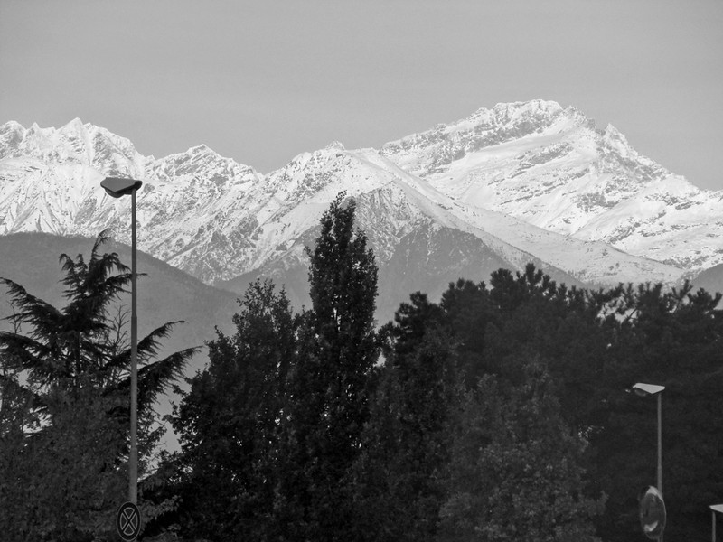Gerry_Alpine View.jpg
