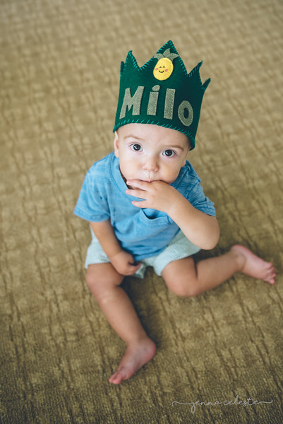 Milo Alvarez birthday Minneapolis St Paul Twin Cities Northfield newborn birth photographer-6791.jpg